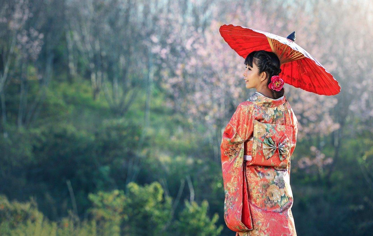 インターンシップやワーキングホリデーを支援!日韓友好に関する事業
